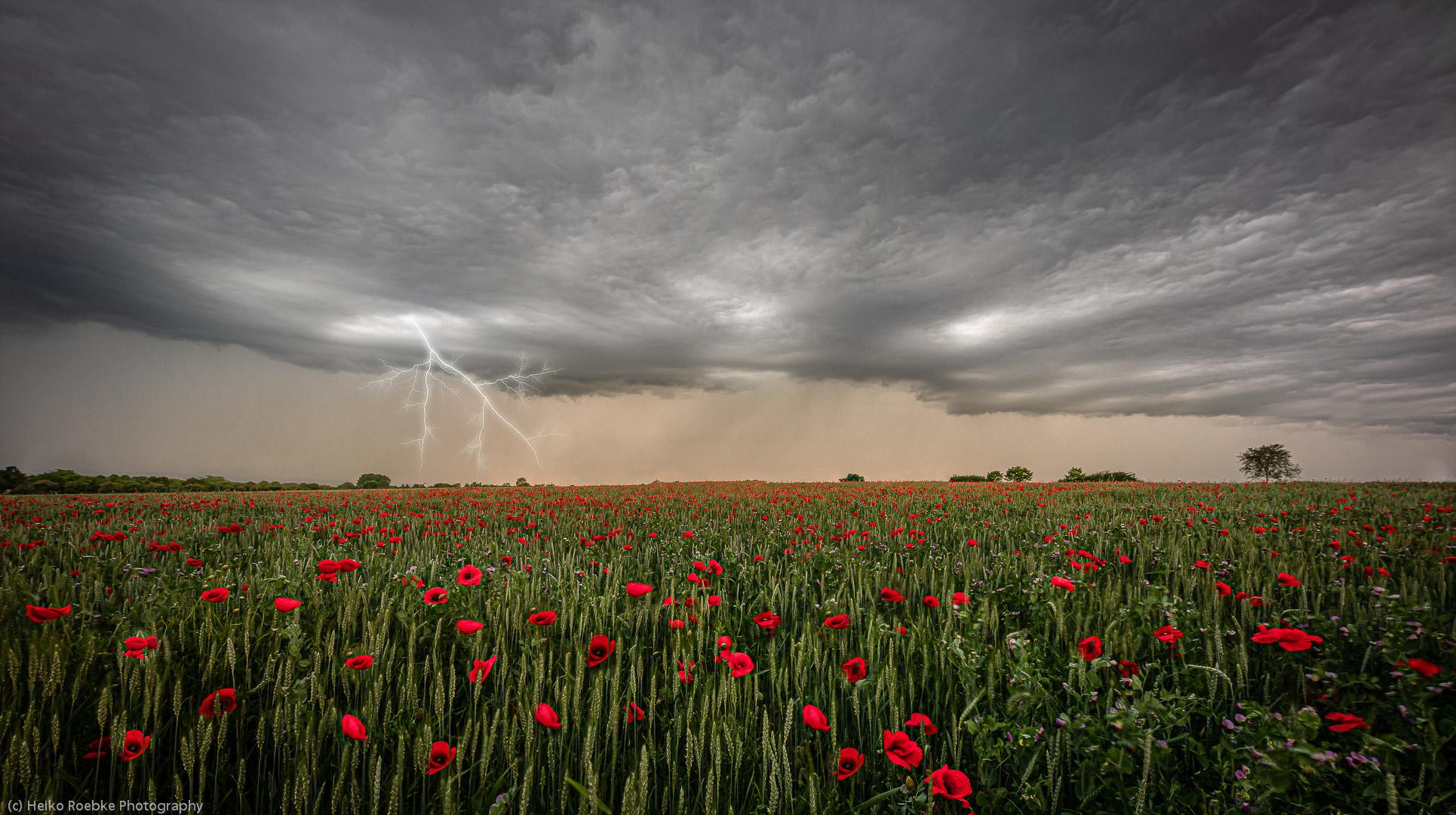 Sommergewitter / summer thunderstorm