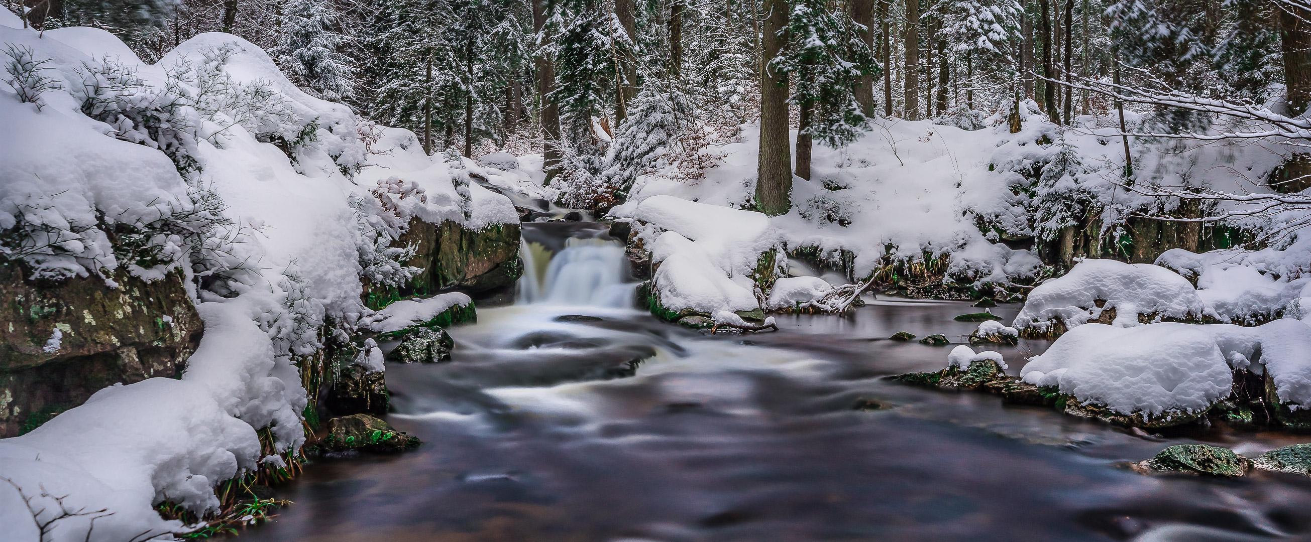 Winterlandschaft / winterscape