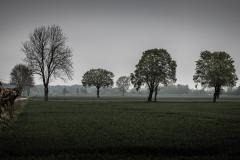 Landschaft bei trübem Wetter