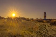 Sonnenstern / sun star